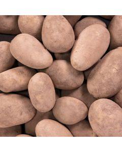 Local Potatoes 12.5kg Bag