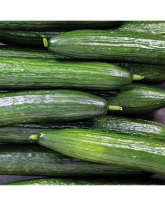 Whole Cucumber