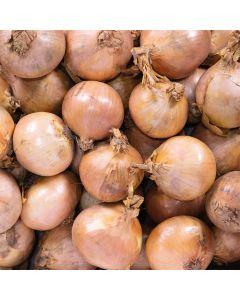 White Onions 1kg