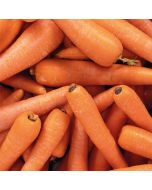Washed Carrots 500g